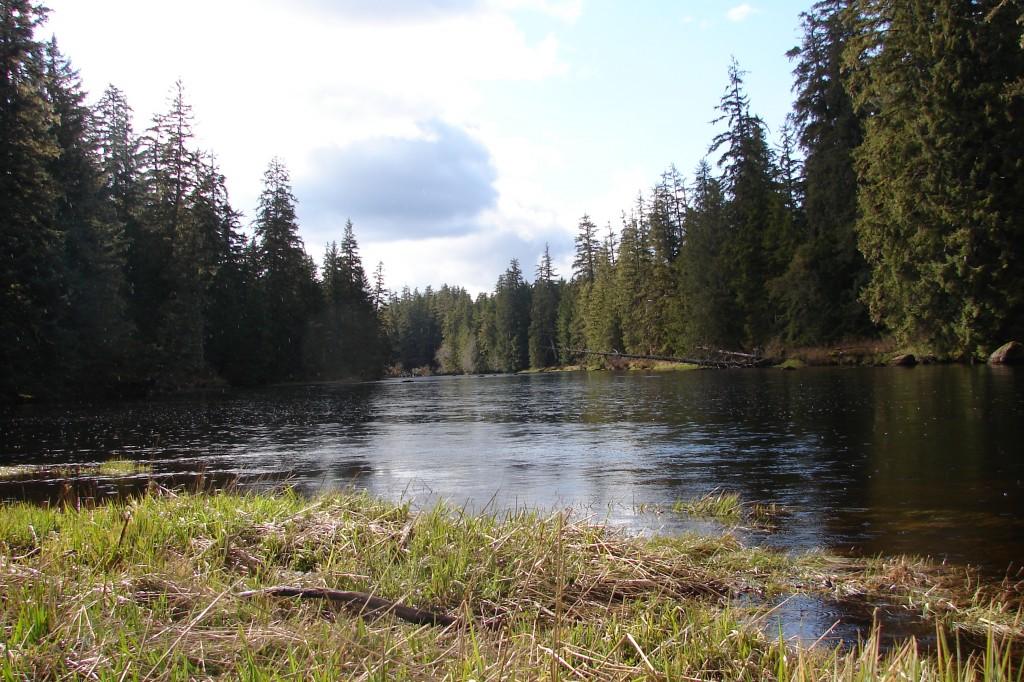 Prince of wales island location renton 39 s river adventures for Prince of wales island fishing