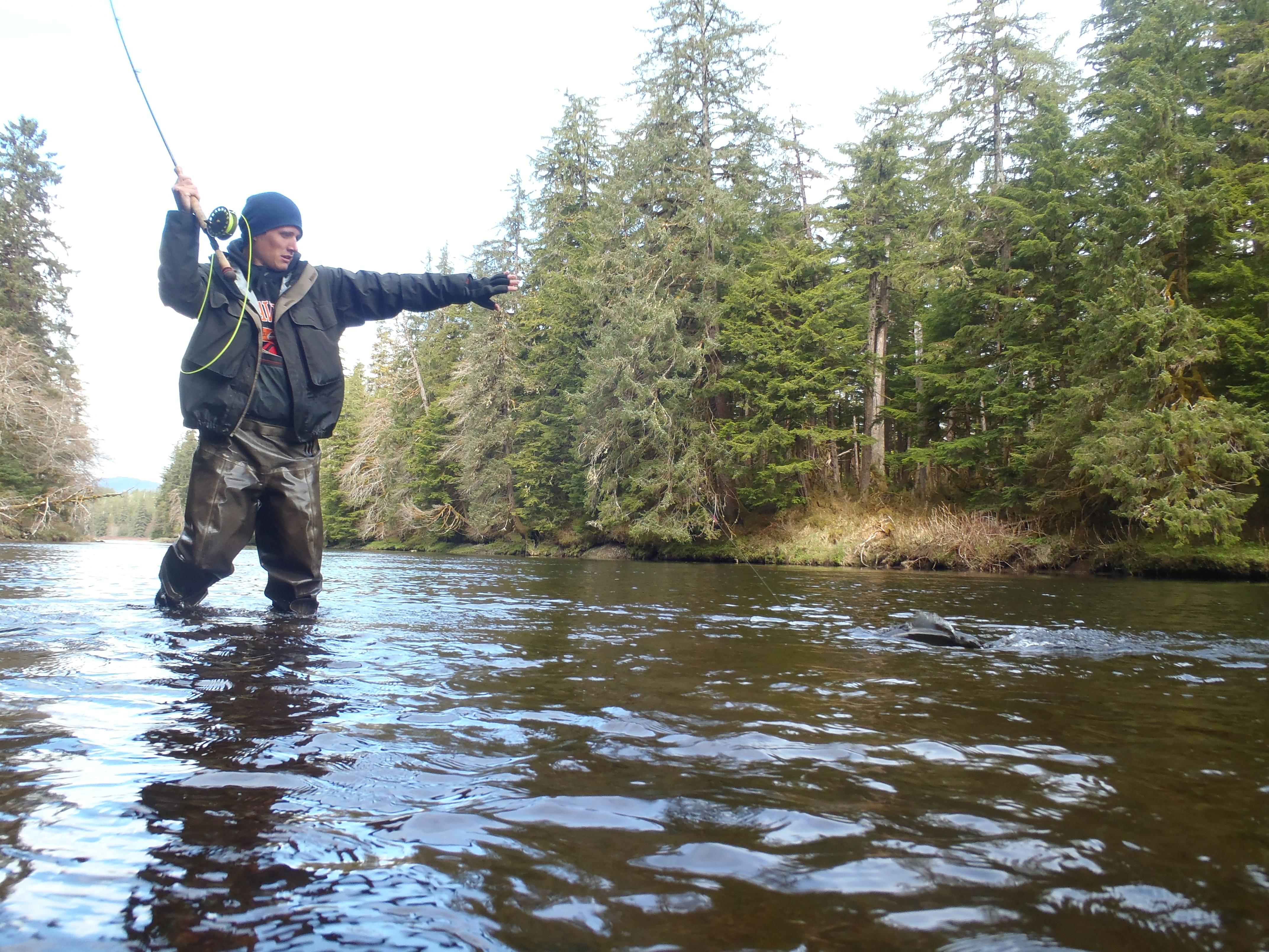 Prince of wales fly fishing southeast alaska steelhead for Prince of wales island fishing