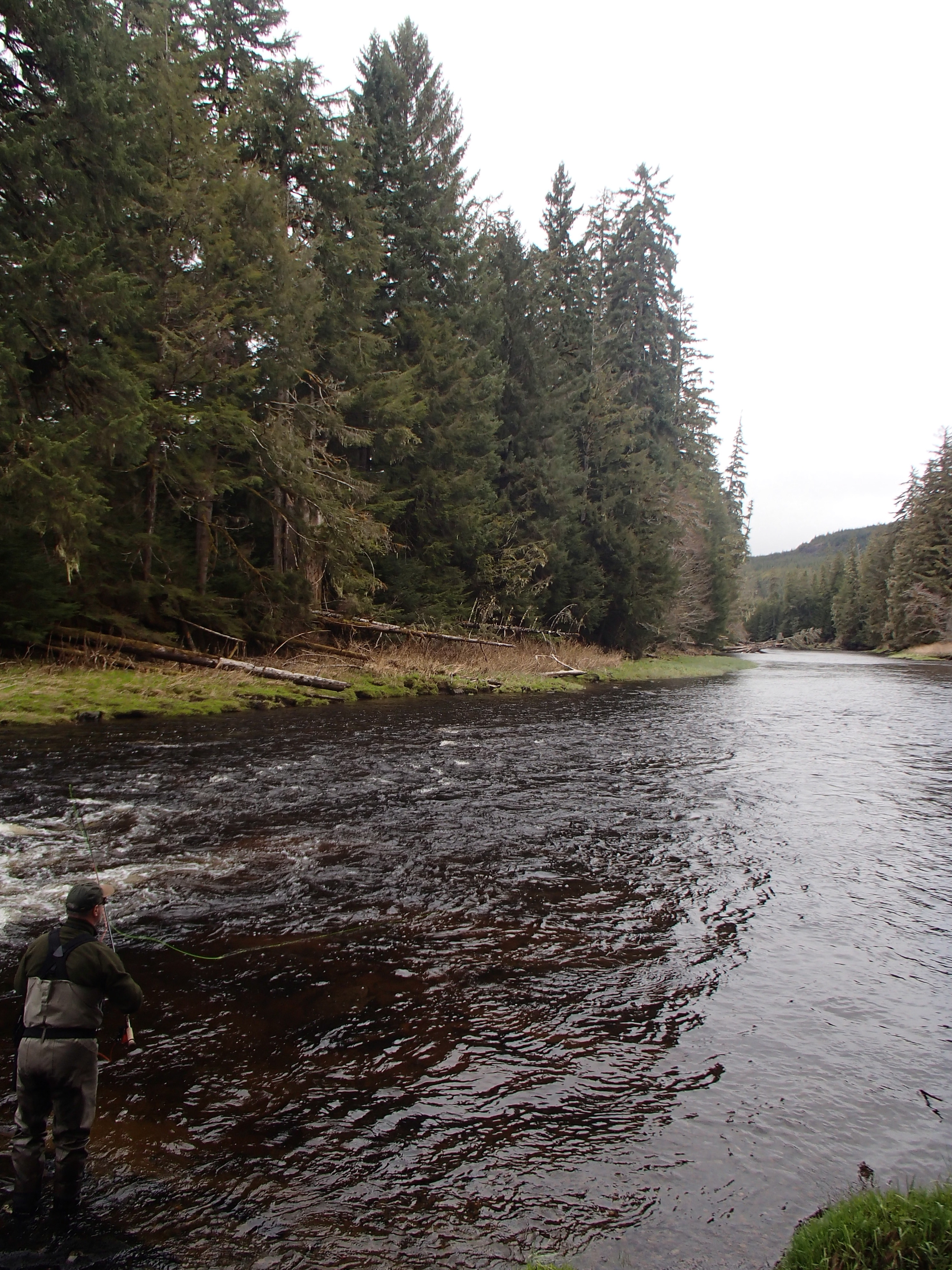 Alaska update renton 39 s river adventures for Prince of wales island fishing
