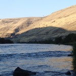 Lower Deschutes Shade Session
